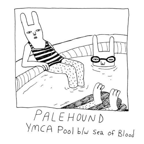 YMCA Pool by Palehound