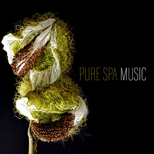 Pure Spa Music by Relaxing Spa Music