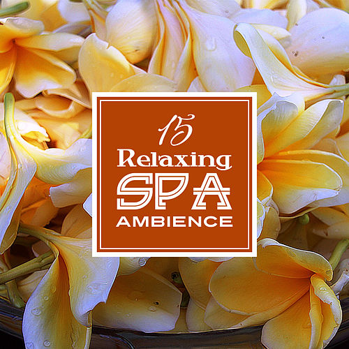 15 Relaxing Spa Ambience de Massage Tribe