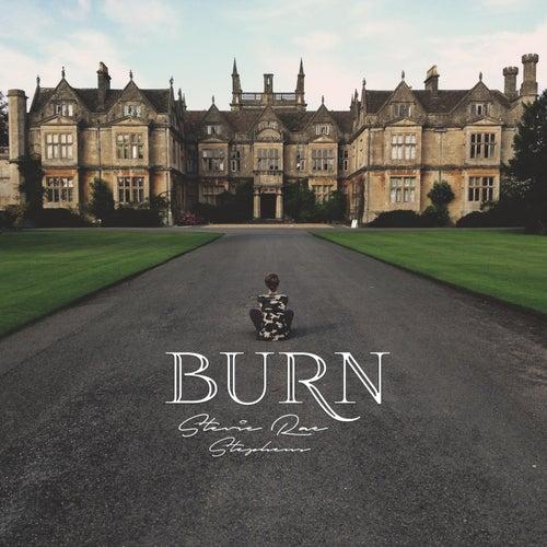 Burn by Stevie Rae Stephens