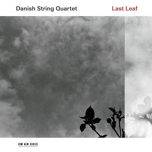 Last Leaf by Danish String Quartet
