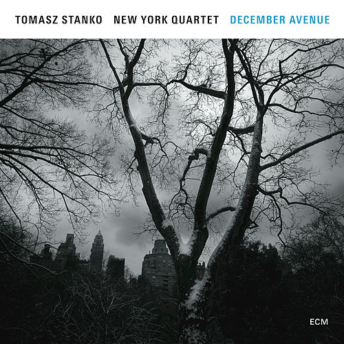 December Avenue by Tomasz Stanko