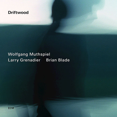 Driftwood by Brian Blade