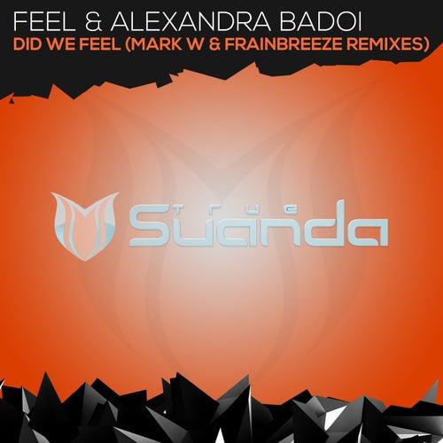 Did We Feel (Remixes) van Feel