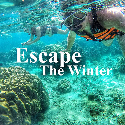 Escape The Winter by Various Artists