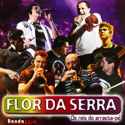 Atende o Celular, Vol. 17 de Flor Da Serra