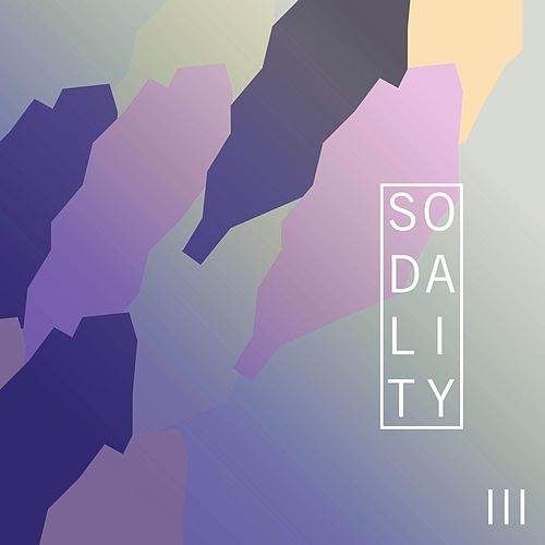 Sodality, Vol. 3 de T. Williams