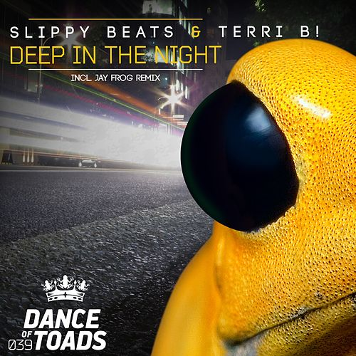 Deep In The Night by Slippy Beats