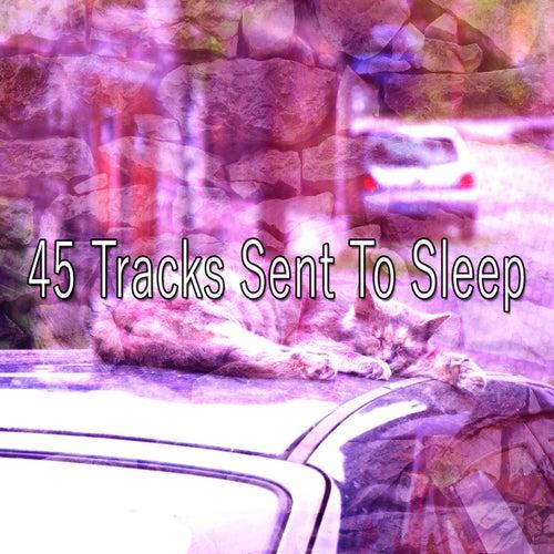 45 Tracks Sent To Sleep von Rockabye Lullaby