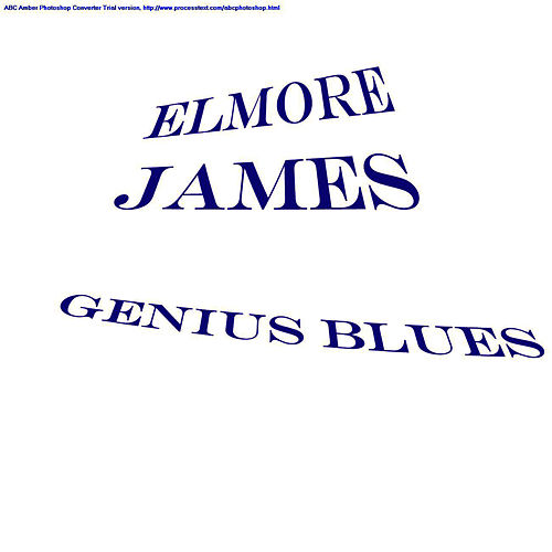 Genius Blues de Elmore James