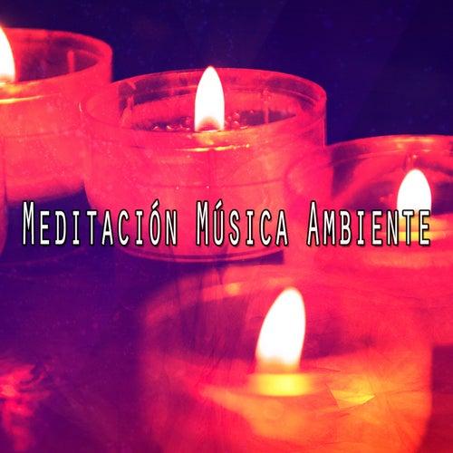37 Soothing Natural Ambience Sounds de Meditación Música Ambiente