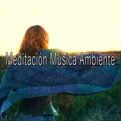 46 Ambience For A Quiet Home de Meditación Música Ambiente