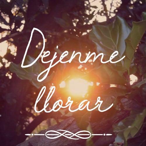 Dejenme Llorar by Guimel Romero