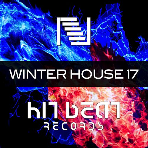 Winter House 17 de Various Artists