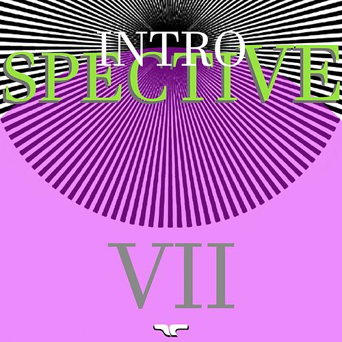 Introspective VII by Various Artists