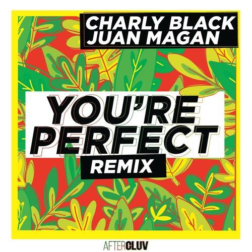 You're Perfect (Remix) de Charly Black & Juan Magan
