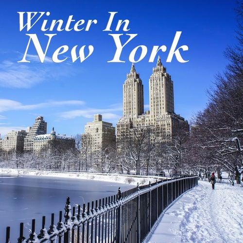 Winter In New York de Various Artists