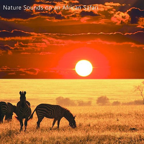 Nature Sounds on an African Safari von Soothing Sounds