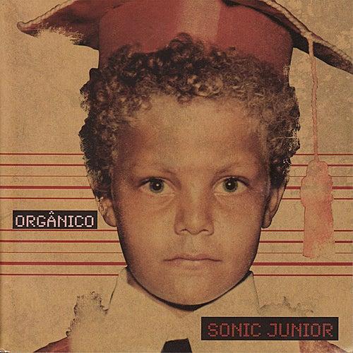 Orgânico de Sonic Junior