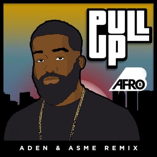 Pull Up (Aden & Asme Remix) von Afrob