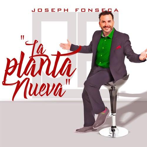La Planta Nueva by Joseph Fonseca
