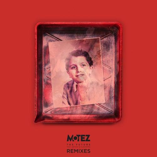 The Future (Remixes) von Motez