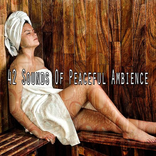 42 Sounds Of Peaceful Ambience de Meditación Música Ambiente