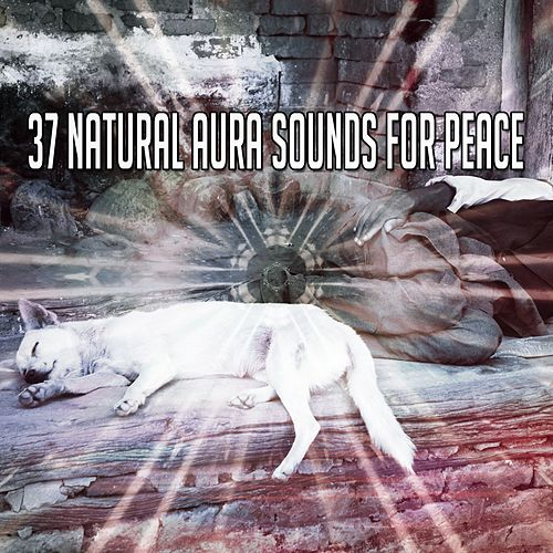 37 Natural Aura Sounds For Peace von Best Relaxing SPA Music