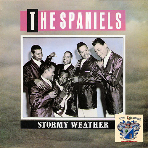 Stormy Weather by The Spaniels