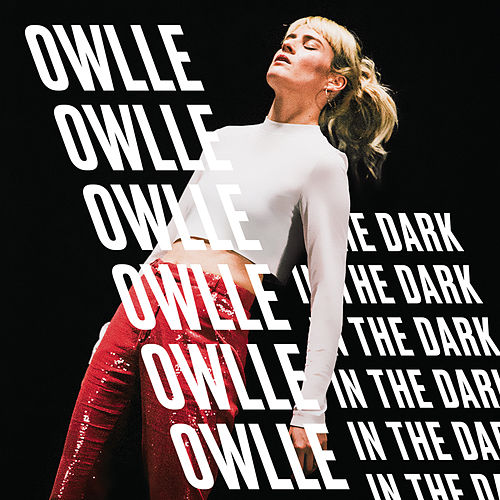 In The Dark by Owlle