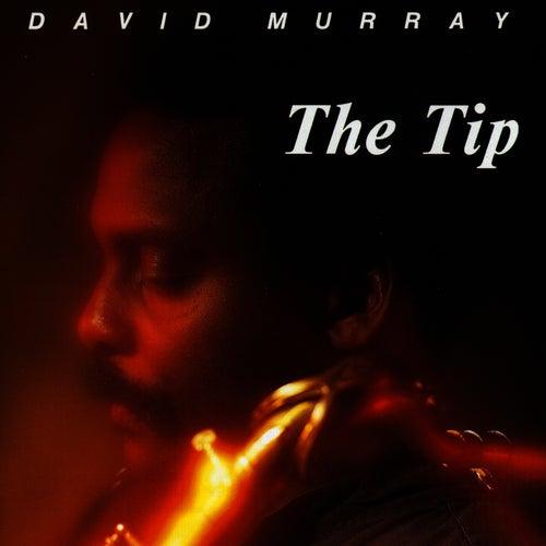 The Tip von David Murray
