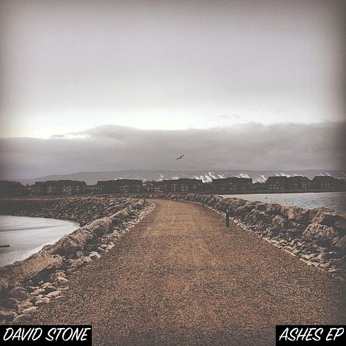 Ashes by David Stone