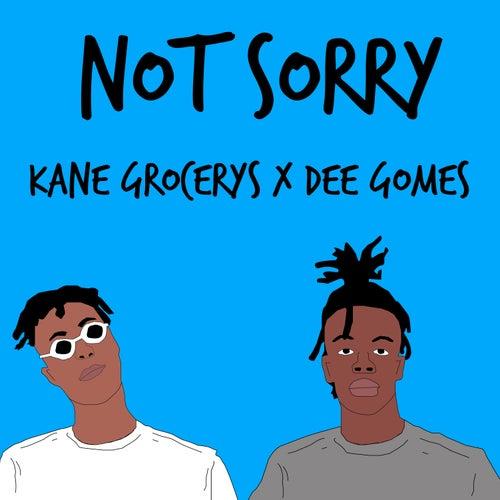 Not Sorry (feat. Dee Gomes) de Kane Grocerys