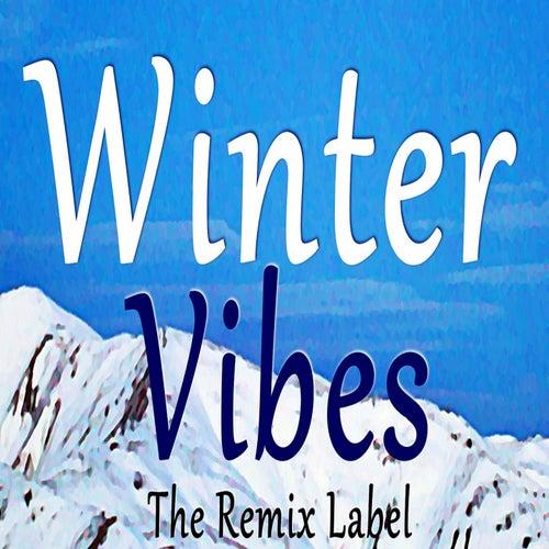 Winter Vibes (Vibrant Ambient Music In Key B on The Remix Label) de Cristian Paduraru