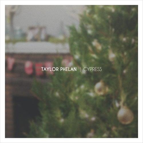 Cypress by Taylor Phelan