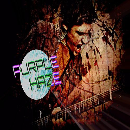 Purple Haze by Frank Palangi