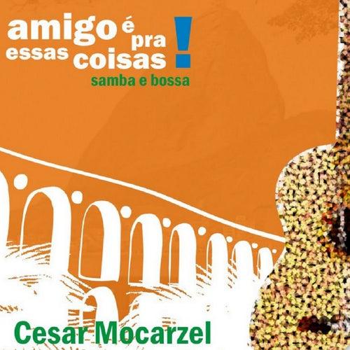 Amigo É pra Essas Coisas von Cesar Mocarzel