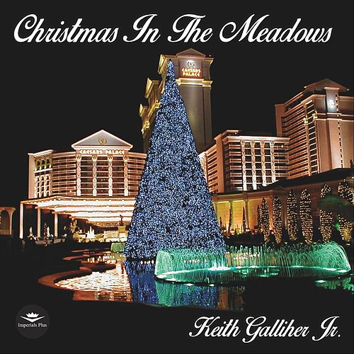 Christmas in the Meadows van Keith Galliher Jr.