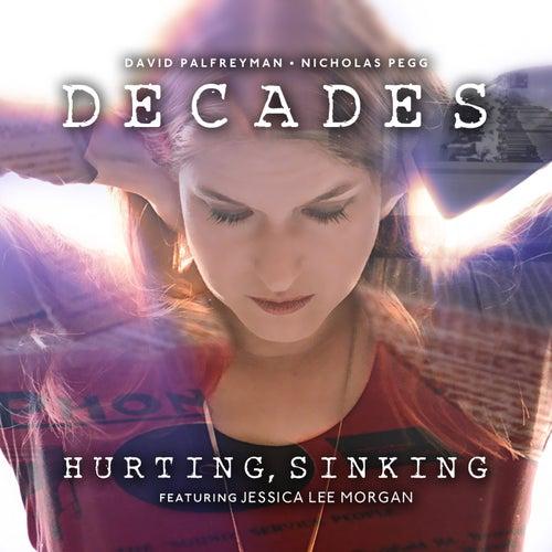 Hurting, Sinking de David Palfreyman and Nicholas Pegg
