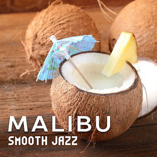 Malibu Smooth Jazz by Various Artists
