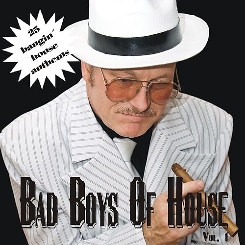 Bad Boys of House, Vol. 1 von Various Artists