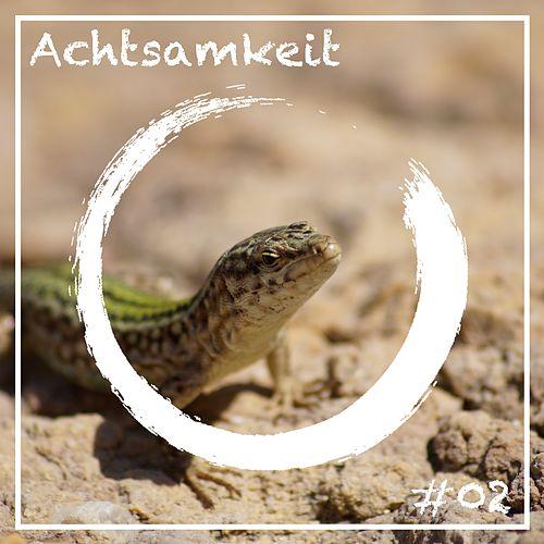 Achtsamkeit 2 by Various Artists