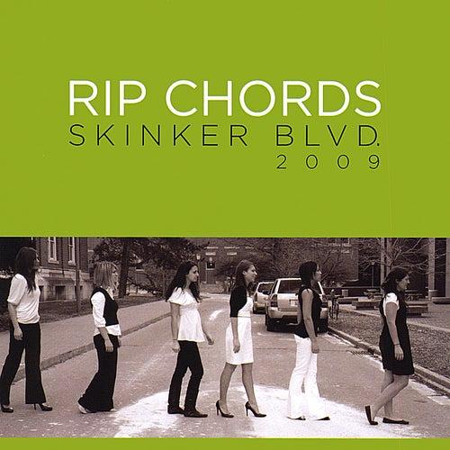 Skinker Blvd de The Rip Chords