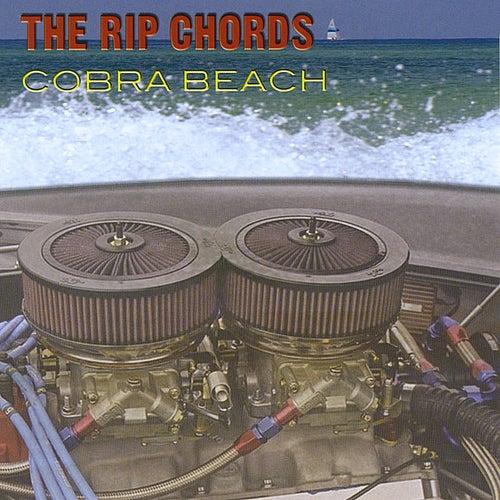 Cobra Beach de The Rip Chords