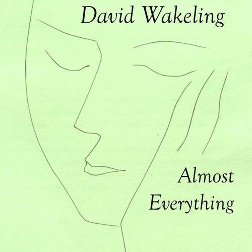 Almost Everything de David Wakeling