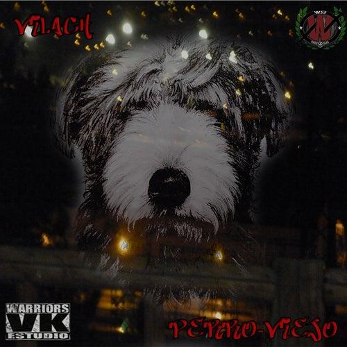 Perro Viejo de Vilach