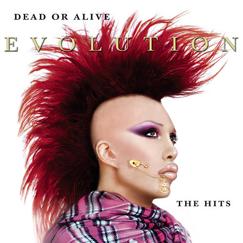 Evolution: The Hits di Dead Or Alive