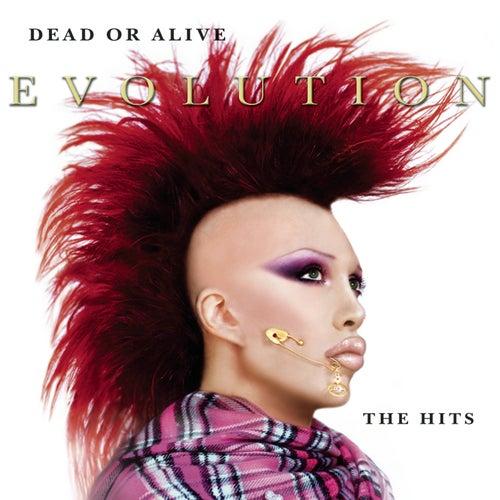 Evolution: The Hits de Dead Or Alive