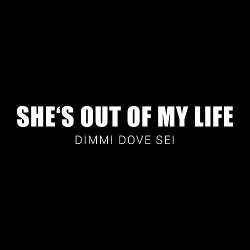 She's out of My Life (Dimmi Dove Sei) de Herrmann & Kleine