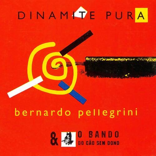 Dinamite Pura by Bernardo Pellegrini